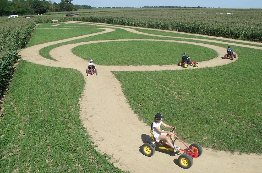 Photo Le Labyrinthe végétal à Romagne- Location de gîte